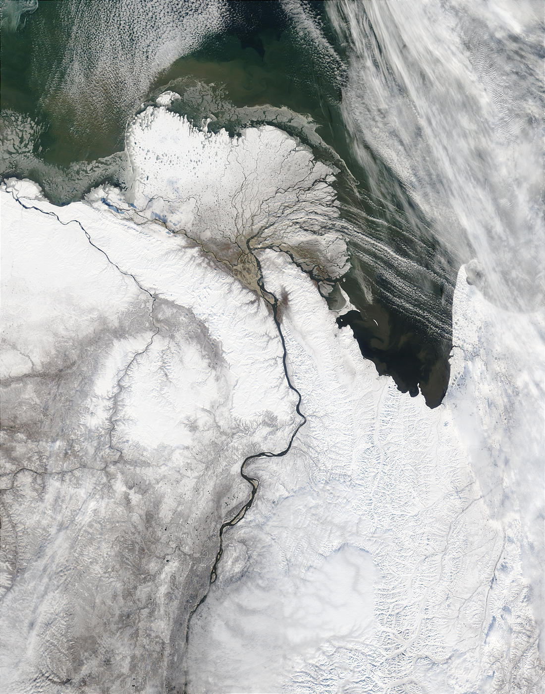Lena River Delta, Russia - related image preview