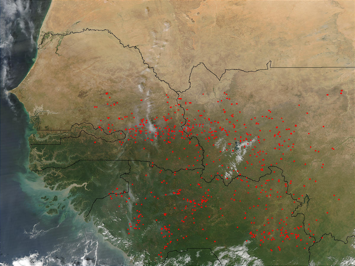 Fires in Western Africa (afternoon overpass) - related image preview