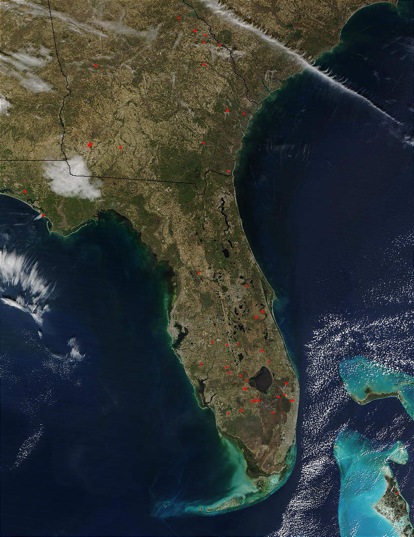 Fires in Florida and Georgia - related image preview