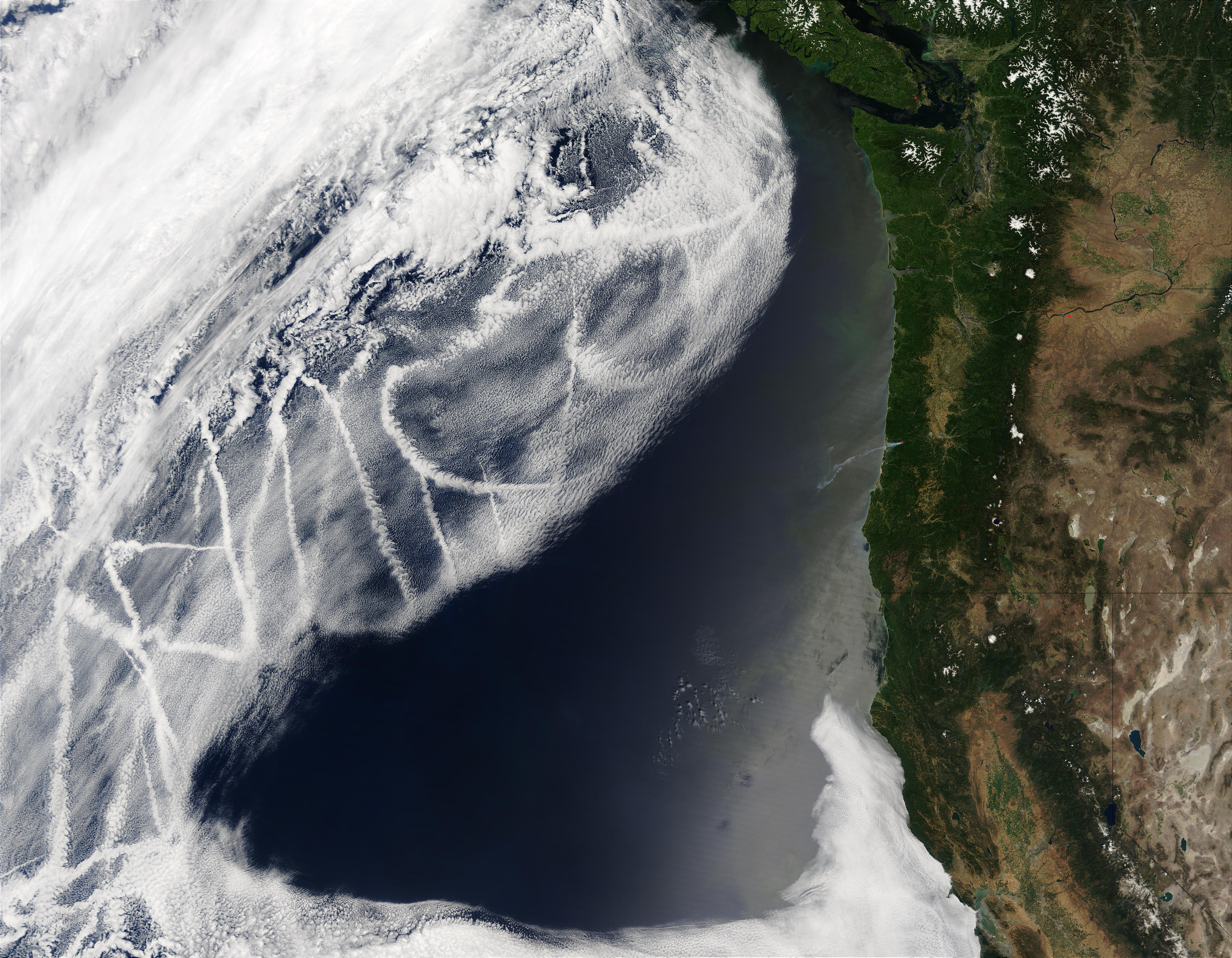 Ship tracks off the western United States - related image preview