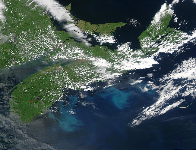Phytoplankton bloom off Nova Scotia - related image preview