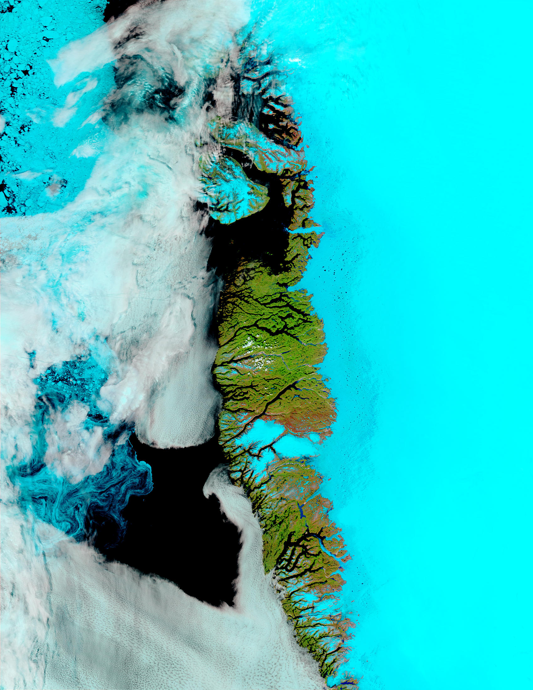 Meltwater ponds along Greenland West Coast (false color) - related image preview