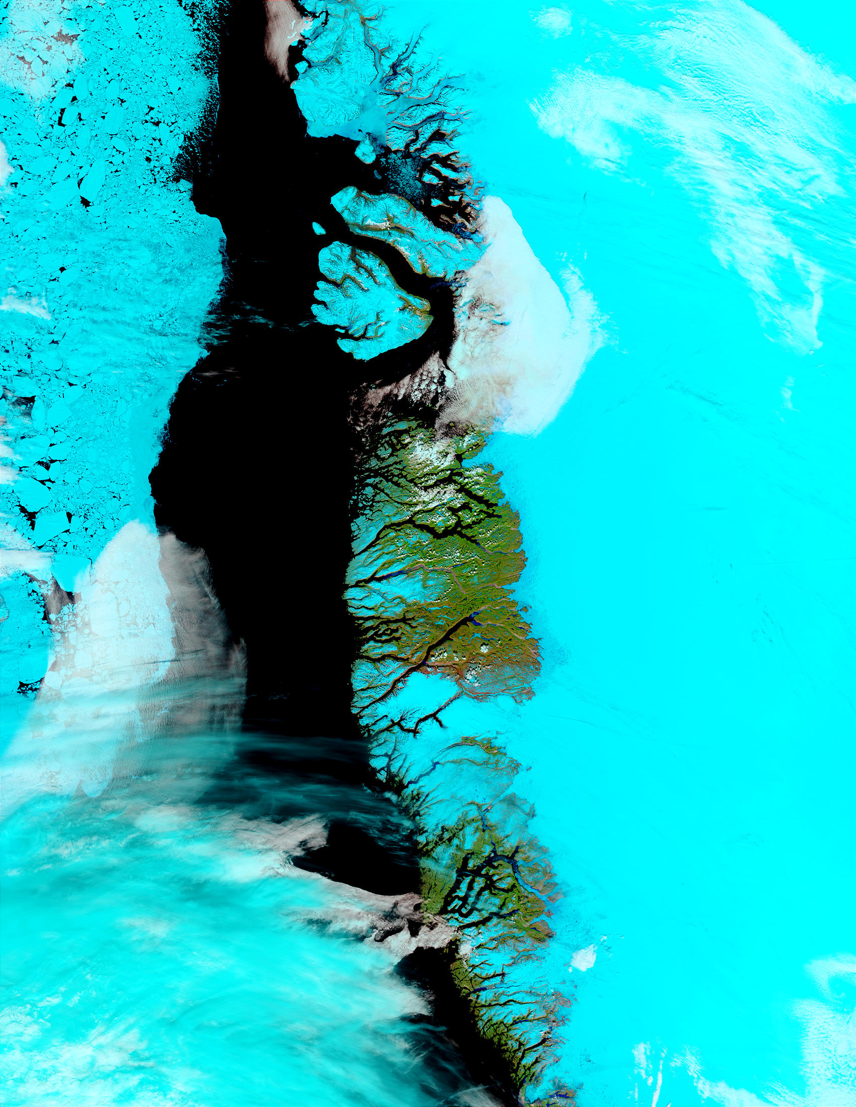 Greenland West Coast (false color) - related image preview