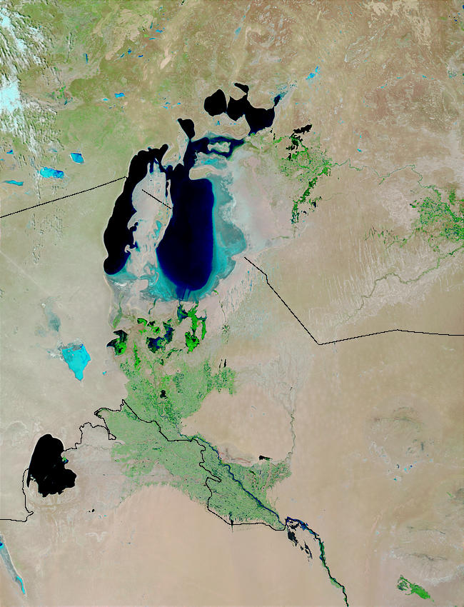 Aral Sea (false color) - related image preview