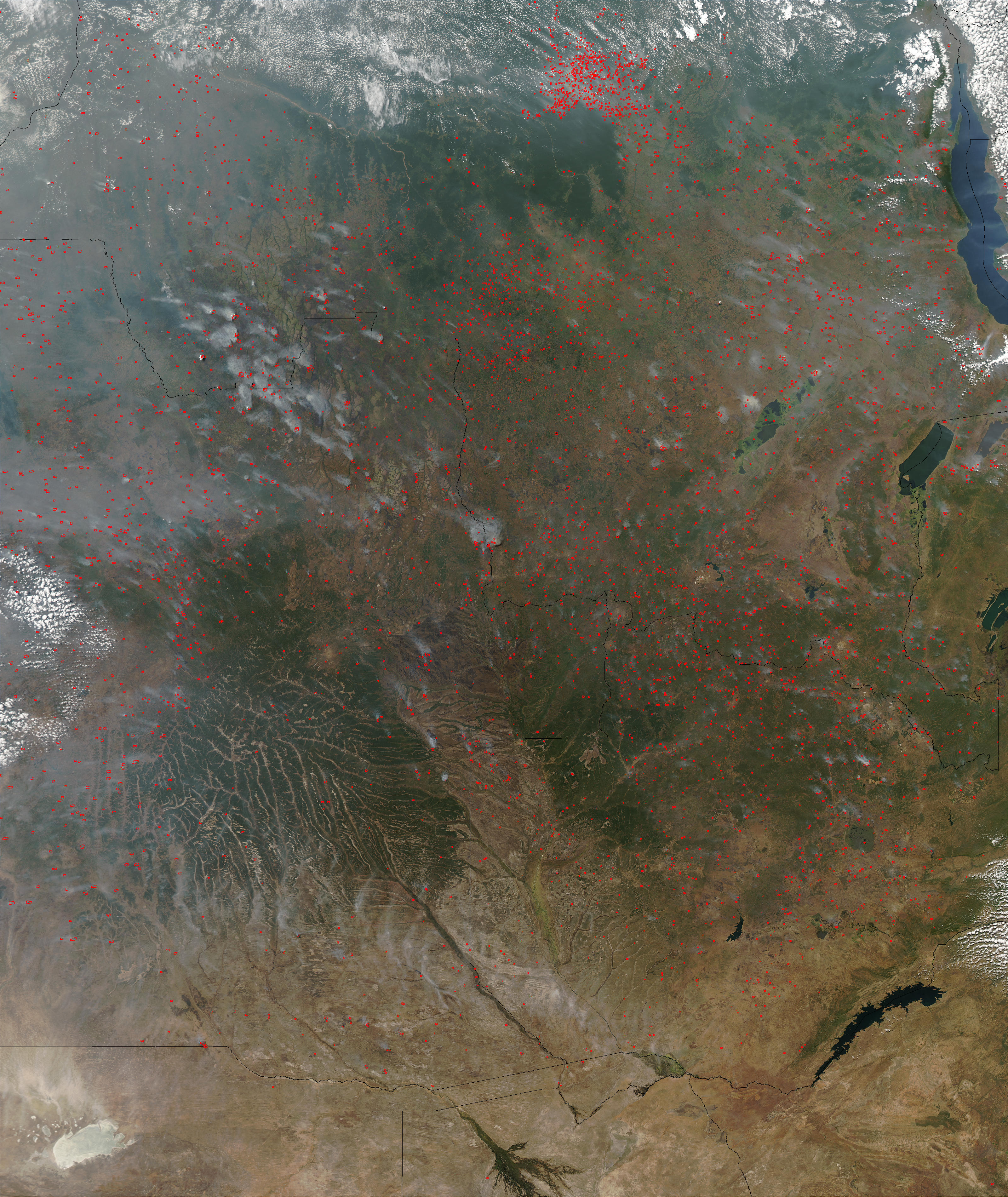 Fires in Angola, the Democratic Republic of the Congo, and Zambia - related image preview