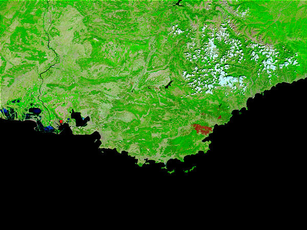 Burn scar in the Maures, Southeast France - related image preview