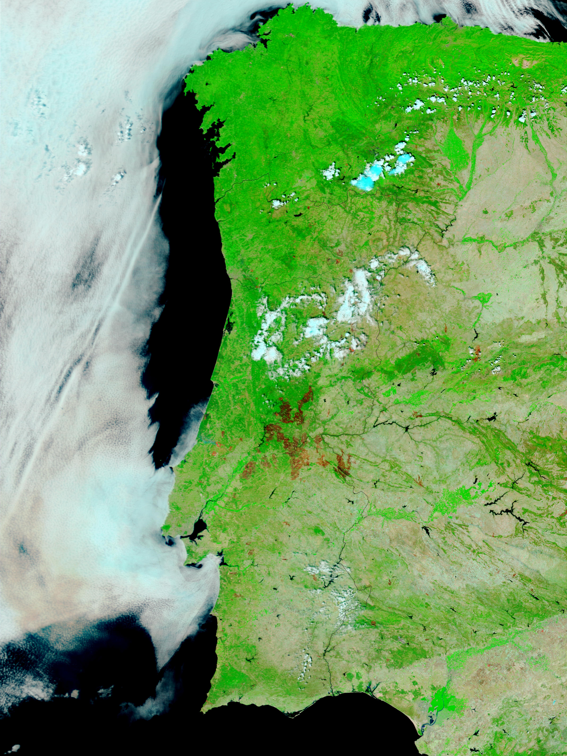 Fires and burn scars across Portugal - related image preview