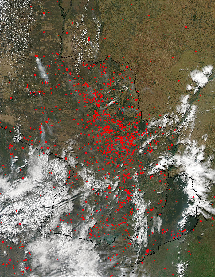 Fires in Paraguay - related image preview