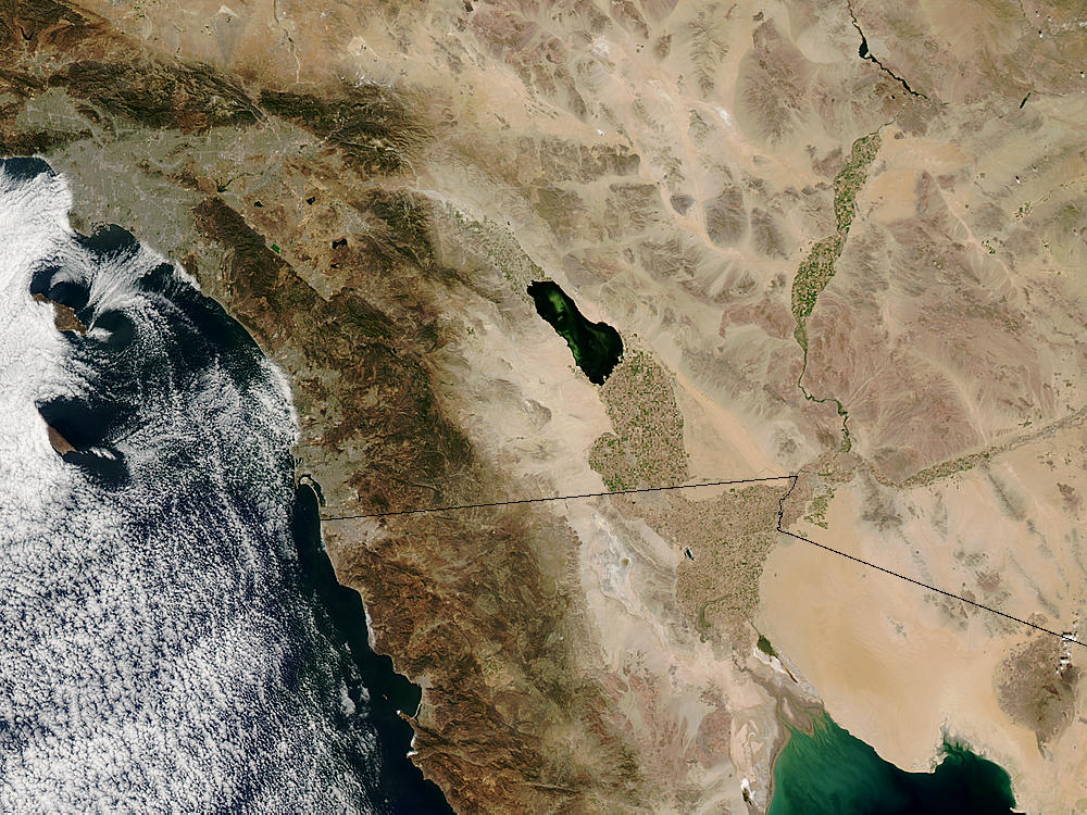 Algal bloom in the Salton Sea, California - related image preview
