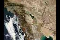 Algal bloom in the Salton Sea, California