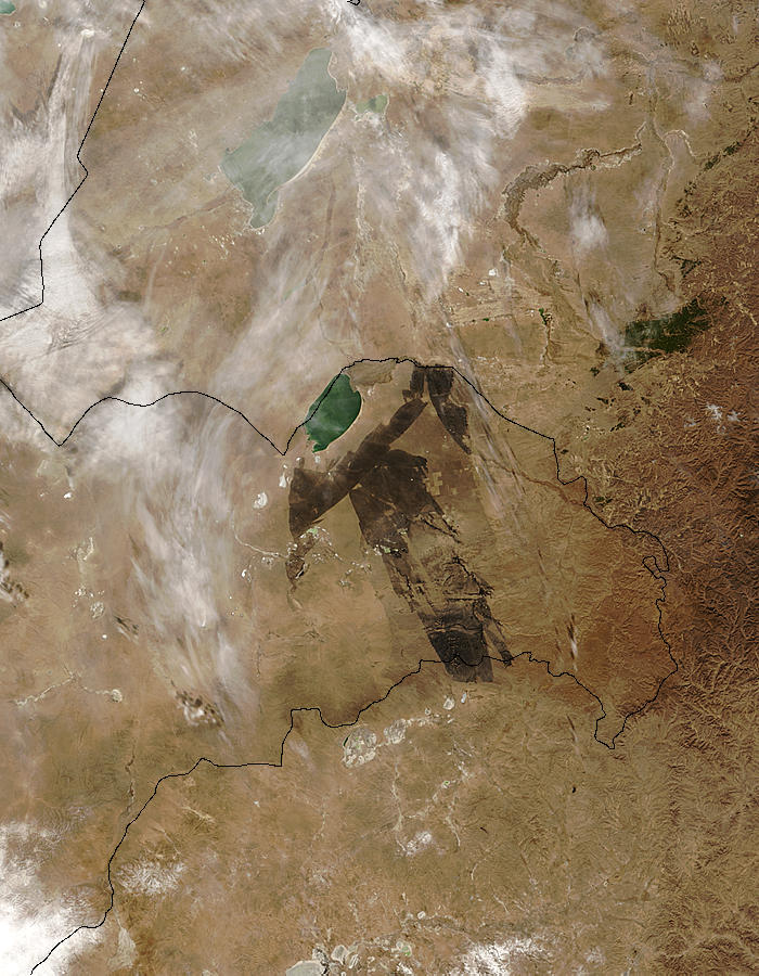 Burn scar in eastern Mongolia - related image preview