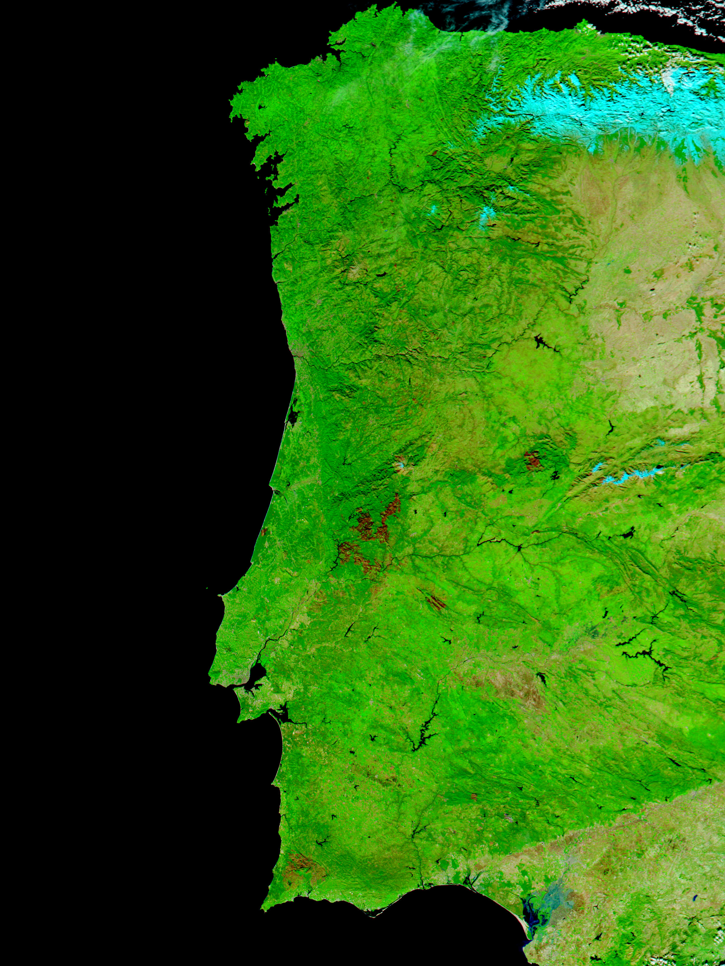 Burn scars from summer 2003 fires in Portugal and Spain - related image preview