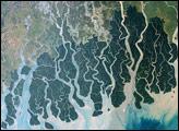 Sundarbans, Bangladesh