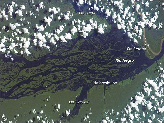 Rio Negro, Amazonia, Brazil