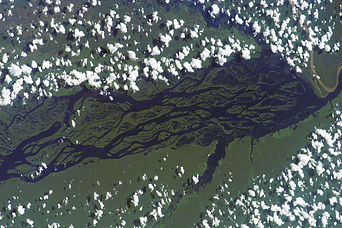 Rio Negro, Amazonia, Brazil - related image preview
