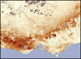 Vegetation Struggles in Southeastern Australia