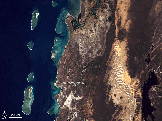 Coral Reefs of Southwest Madagascar