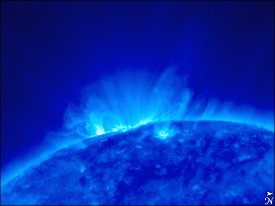 STEREO's First View of the Sun