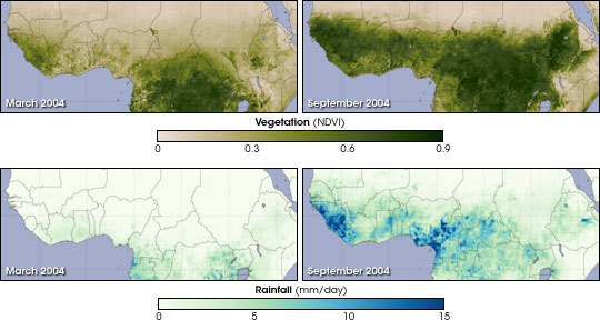 Vegetation and Rainfall in the Sahel
