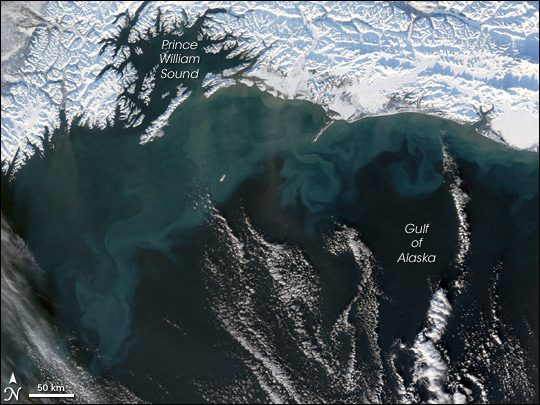 Ocean Color in the Gulf of Alaska