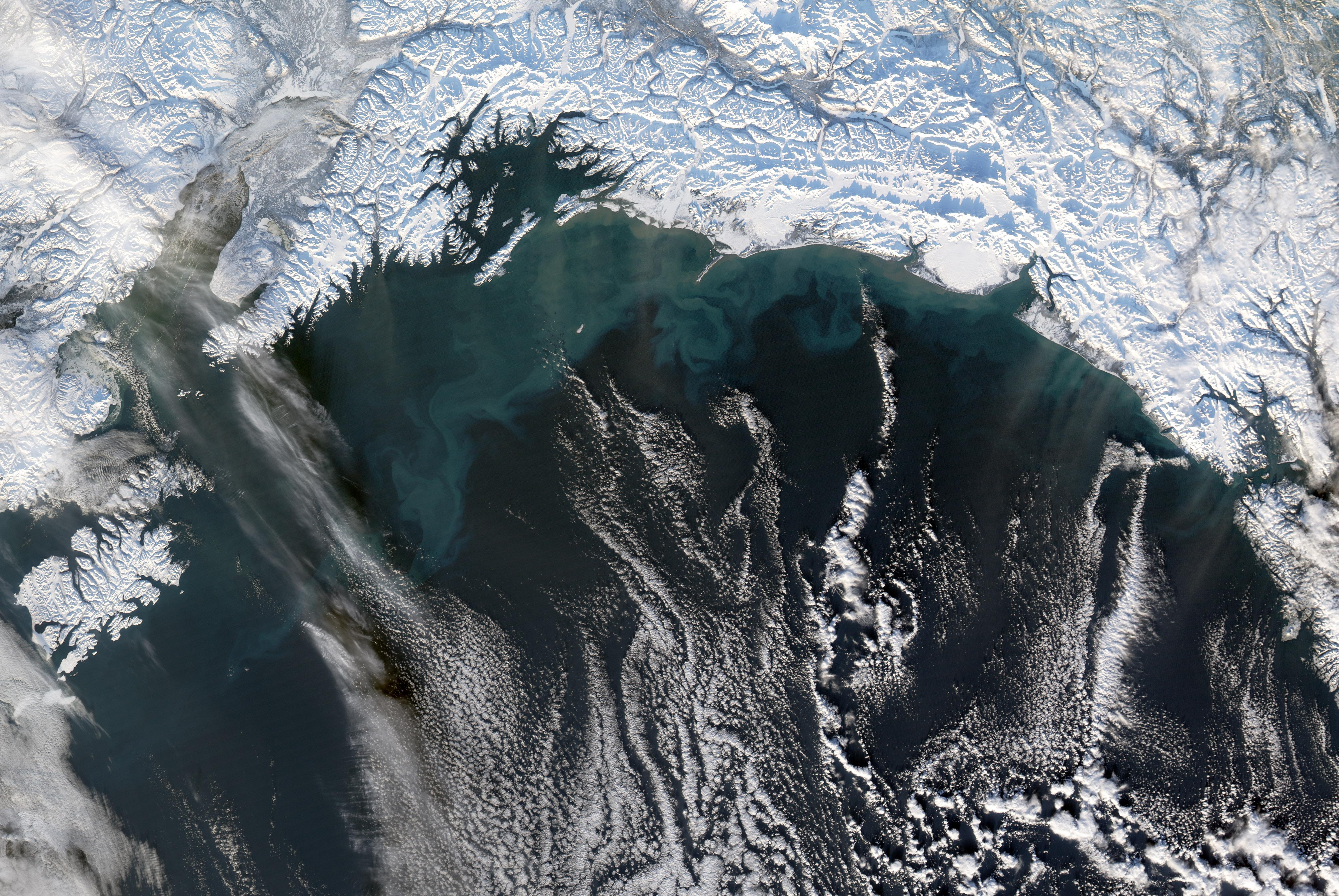 gulf of alaska - 1000×670