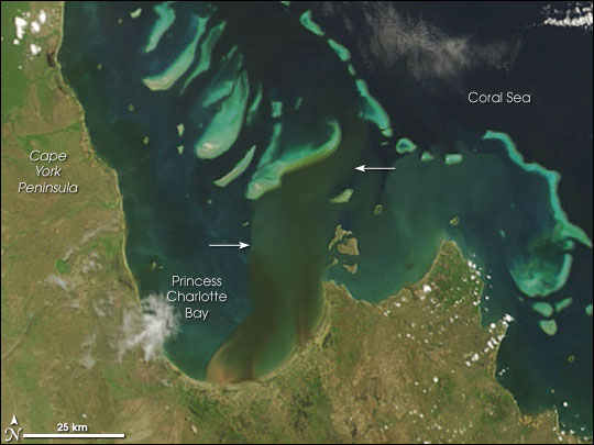 River Plumes Threaten Great Barrier Reef