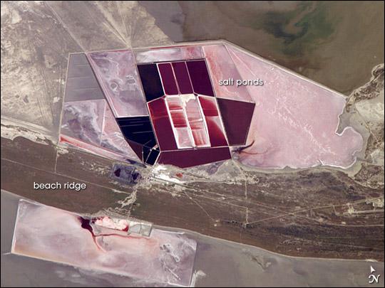 Salt Ponds, Botswana