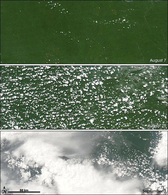 Initiation of Rainy Season in Southern Amazon
