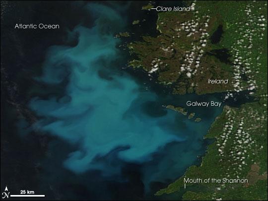 Blooming Seas West of Ireland