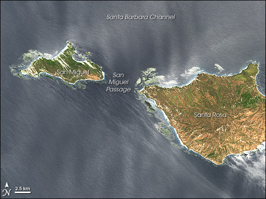 San Miguel and Santa Rosa Islands