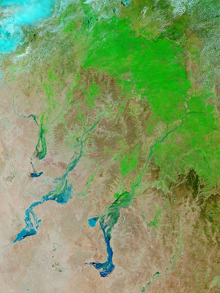 Floods and green-up in Queensland, Australia (false color) - related image preview