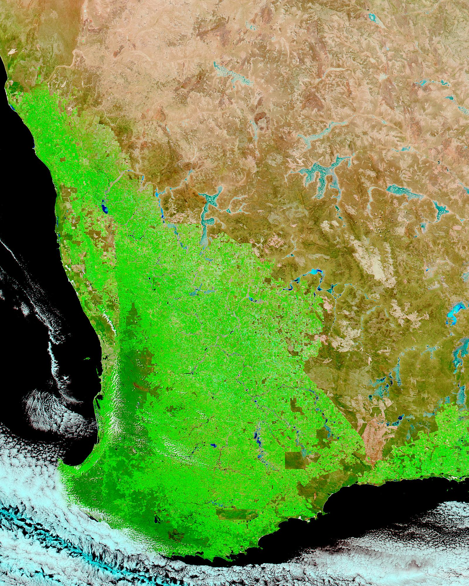 Record harvest in Southwest Australia (false color) - related image preview