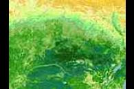 Normalized Difference Vegetation Index (NDVI) image of Central Africa
