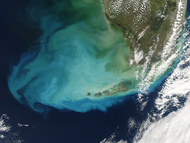 Resuspended bottom sediments off Florida - selected image