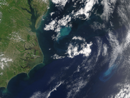 Phytoplankton Bloom off the US East Coast - selected image