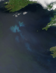 Phytoplankton bloom south of Ireland - selected image