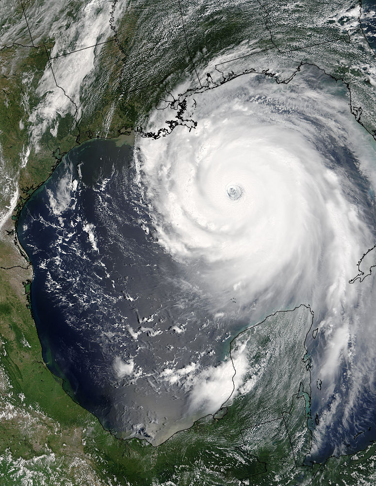 Hurricane Katrina (12L) approaching the Gulf Coast - related image preview