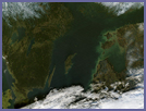 Gotland island in the Baltic Sea - selected image