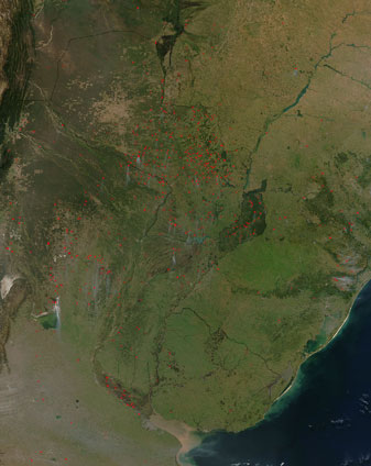Fires in South America - related image preview