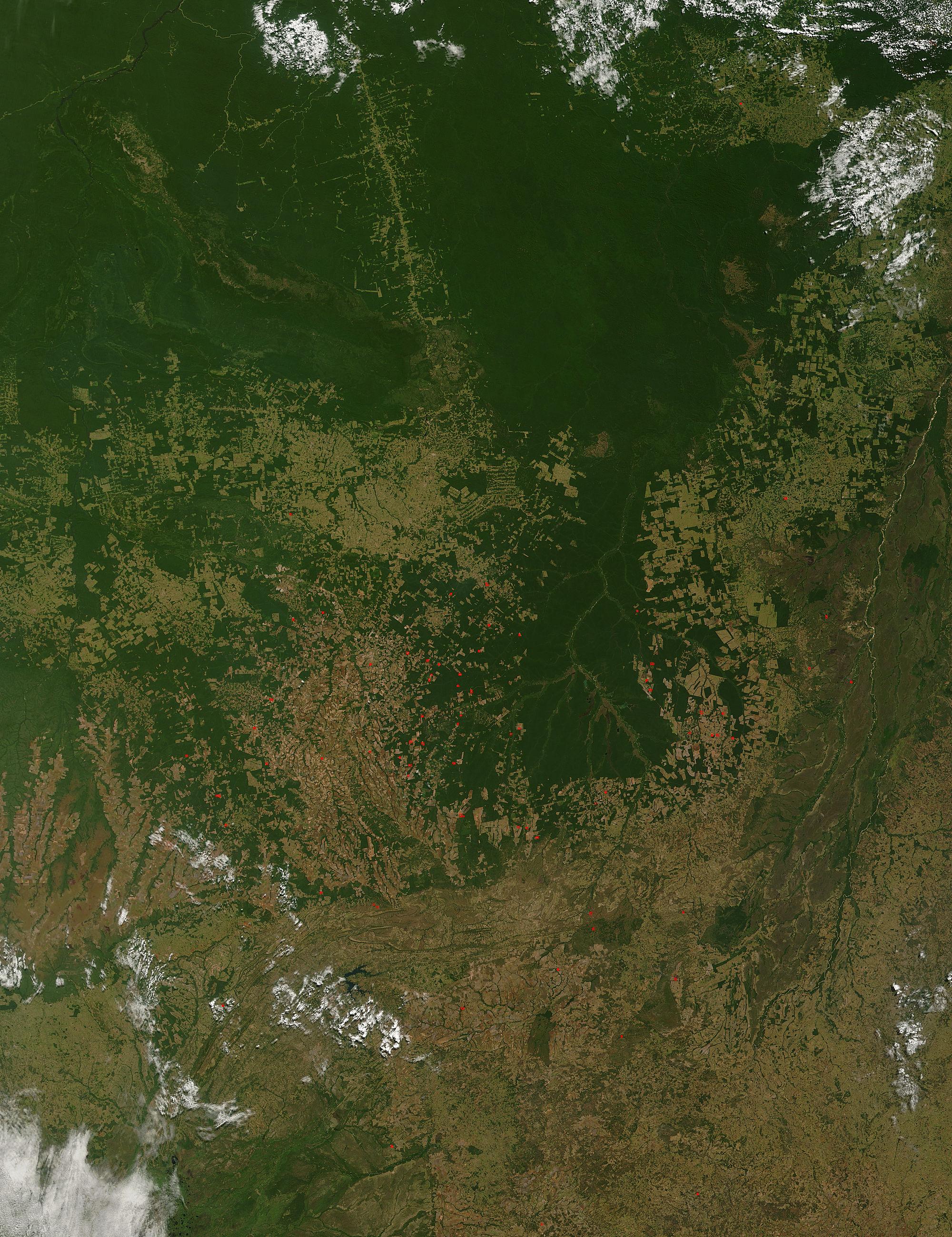 Deforestation in Mato Grasso, Brazil - related image preview