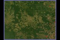 Deforestation in Mato Grasso, Brazil