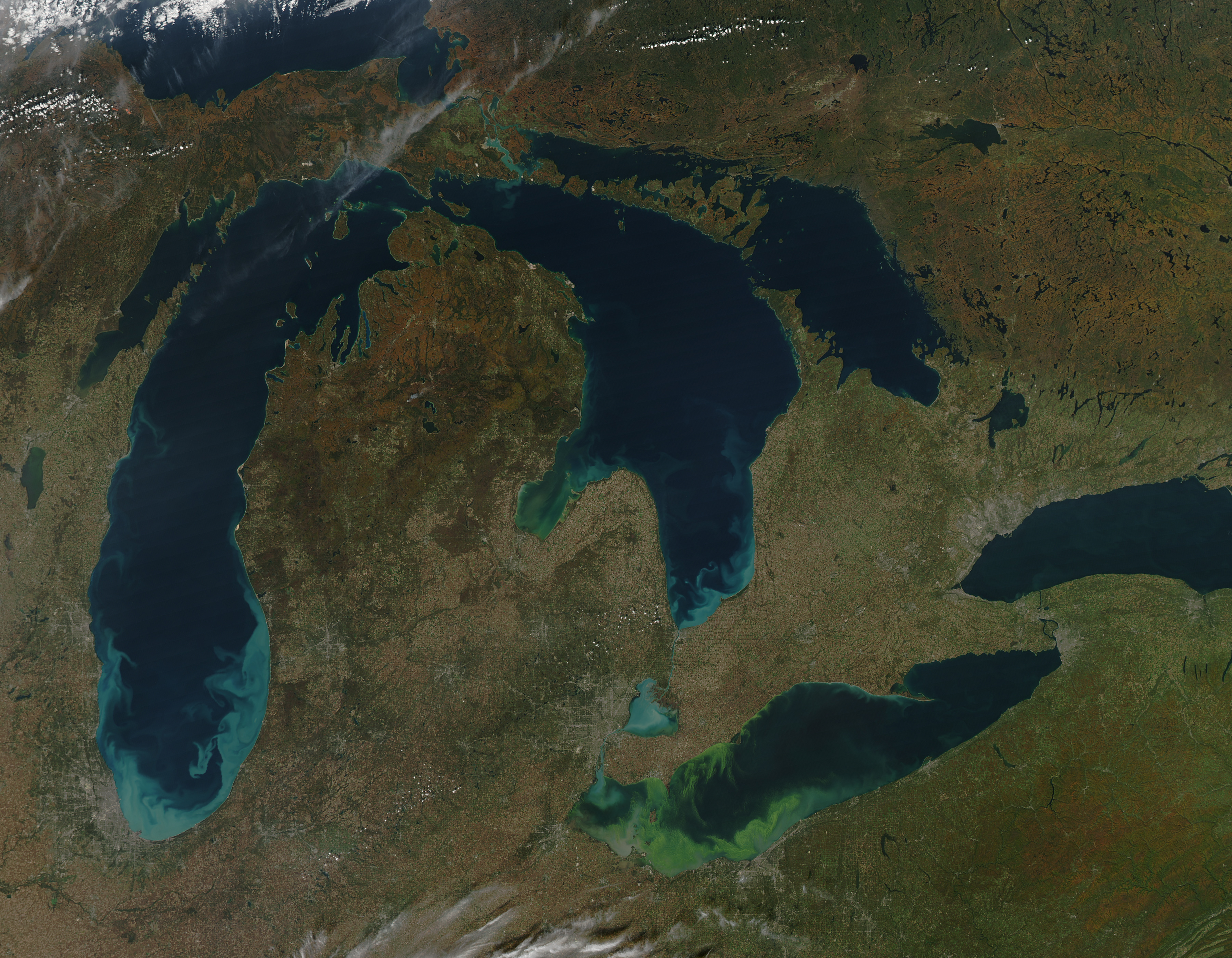 Toxic Algae Bloom in Lake Erie - related image preview