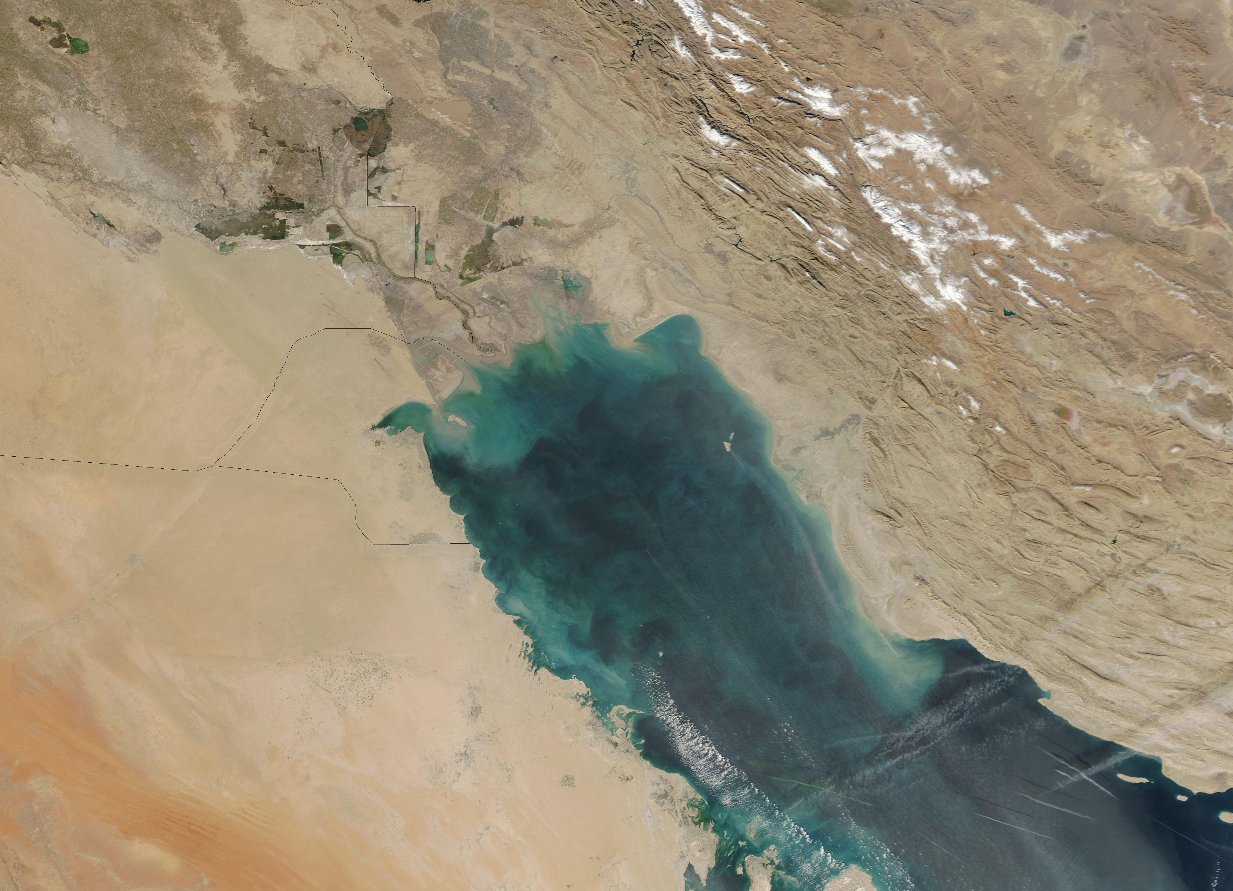 Green Hues Dominate the Persian Gulf - related image preview