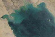Green Hues Dominate the Persian Gulf
