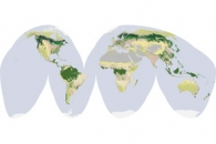 Global Land Cover Classification