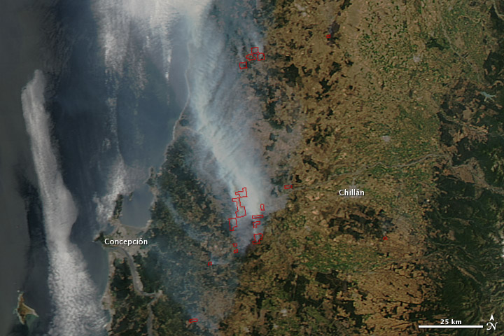 Wildfire in Bío-Bío, Chile