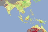 Total Biomass Carbon Uncertainty