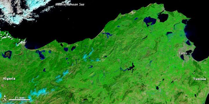 Floods in Northwestern Tunisia