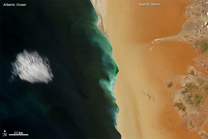 Hydrogen Sulfide Emissions off of Africa