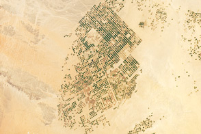 Agricultural Fields, Wadi As-Sirhan Basin, Saudi Arabia